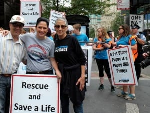 myself with Chicago City Clerk Susana Mendoza and Cari Meyers, founder Puppy Mill Project