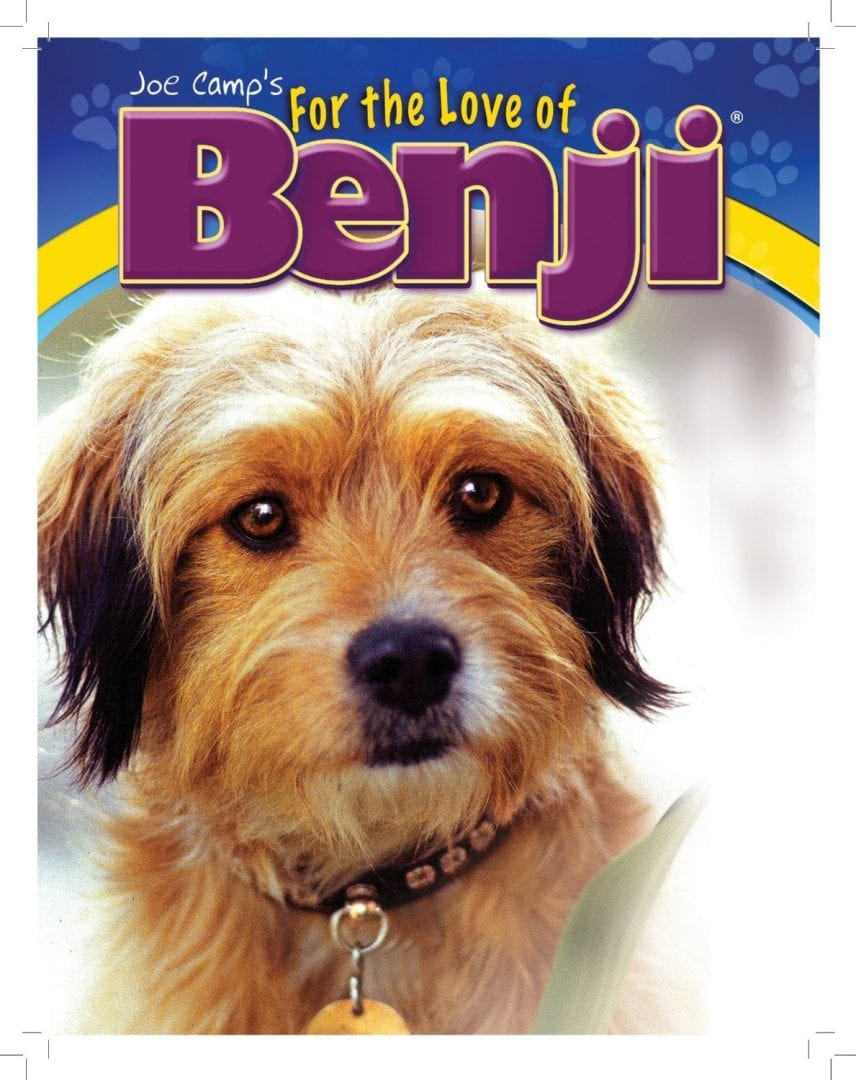 Benji The Movie Dog Breed