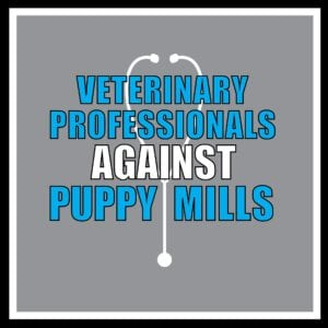 Most veterinary professionals are appalled at the idea of continuing to treat animals from the mills. Veterinary Professionals AGAINST Puppy Mills: https://www.facebook.com/veterinaryprofessionalsagainstpuppymills/