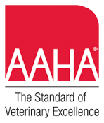 Pet expert Steve Dale and Dr. Heather Loenser on the American Animal Hospital Association End of Life Care Guidelines