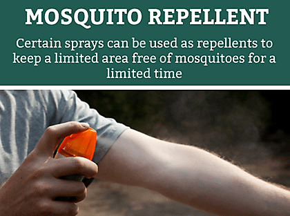 Pet expert Steve Dale writes about protecting pets against mosquitoes with a Double Defense