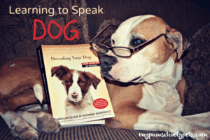 LOTS of dog training tips and hints in this book, and all methods here are humane
