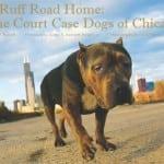 A Ruff Road Home Steve Dale and Cynthia Bathurst