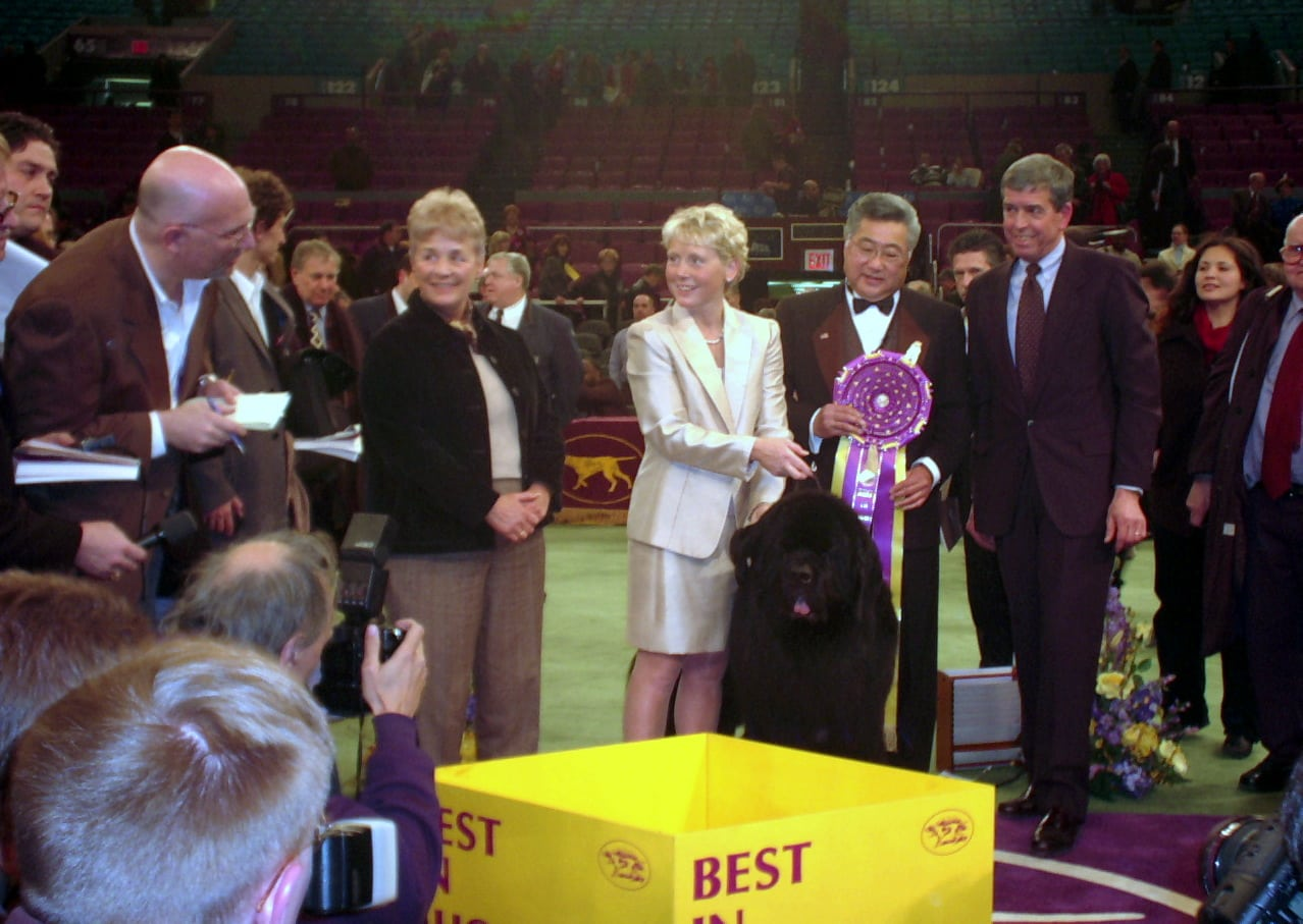 When Can We Watch  Westminster Dog Show