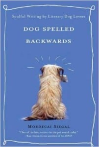 dog spelled backwards with Mordecai Seigal and Steve Dale