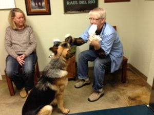 Dr. Becker leading a move to remove fear, anxieety and stress from vet visits called fear free