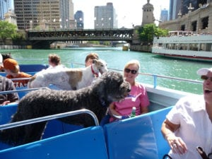Steve Dale speaks with Holly Agra about the Canine Cruise