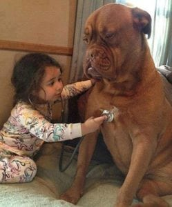 Pet Care Begins with Vet Care