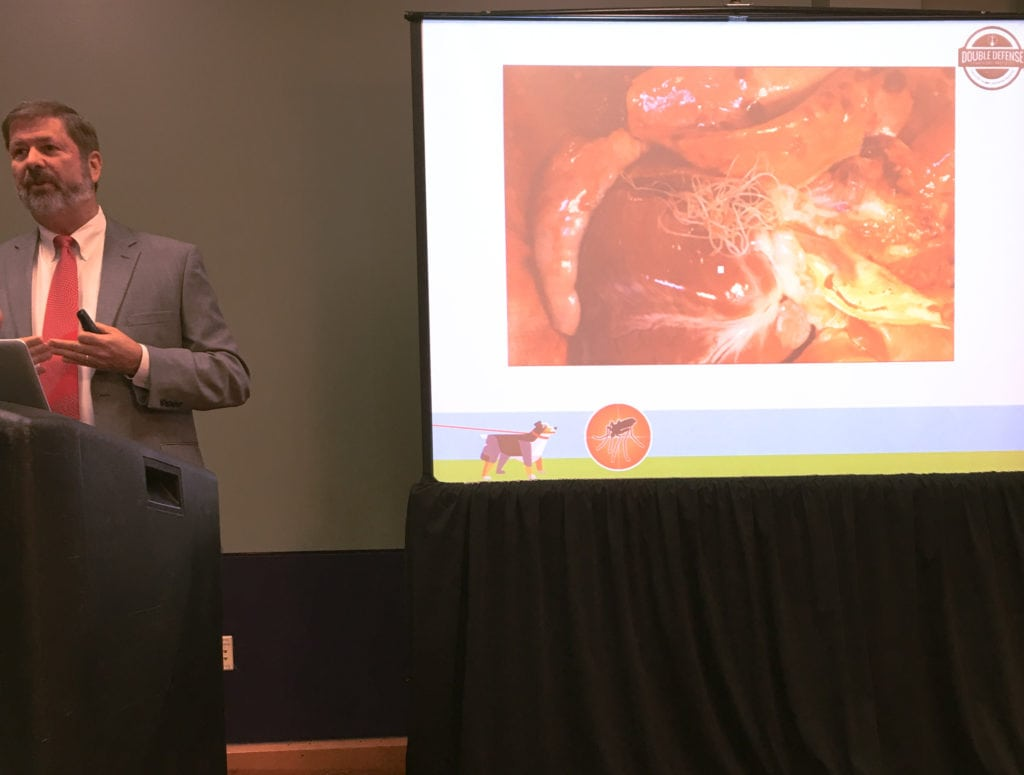 Dr. Christopher Rehm points out what heartworm looks like in dogs; it's not pretty or pleasant, and neither is treatment. So it's all about prevention.