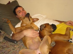 pet expert Steve Dale comments and updates regarding the Montreal ban on pit bulls