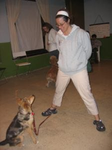 Steve Dale and Jennifer Arnold talk dog training classes