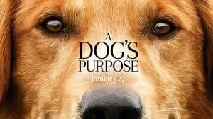 Pet expert Steve Dale reviews a Dog's Purpose
