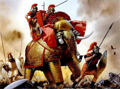Elephant marched with armies into countless battles