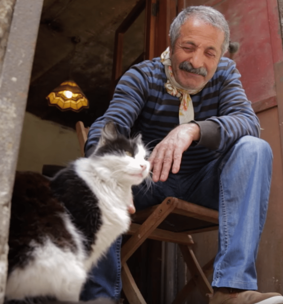 Pet expert Steve Dale on KEDi movie about the cats of Istanbul