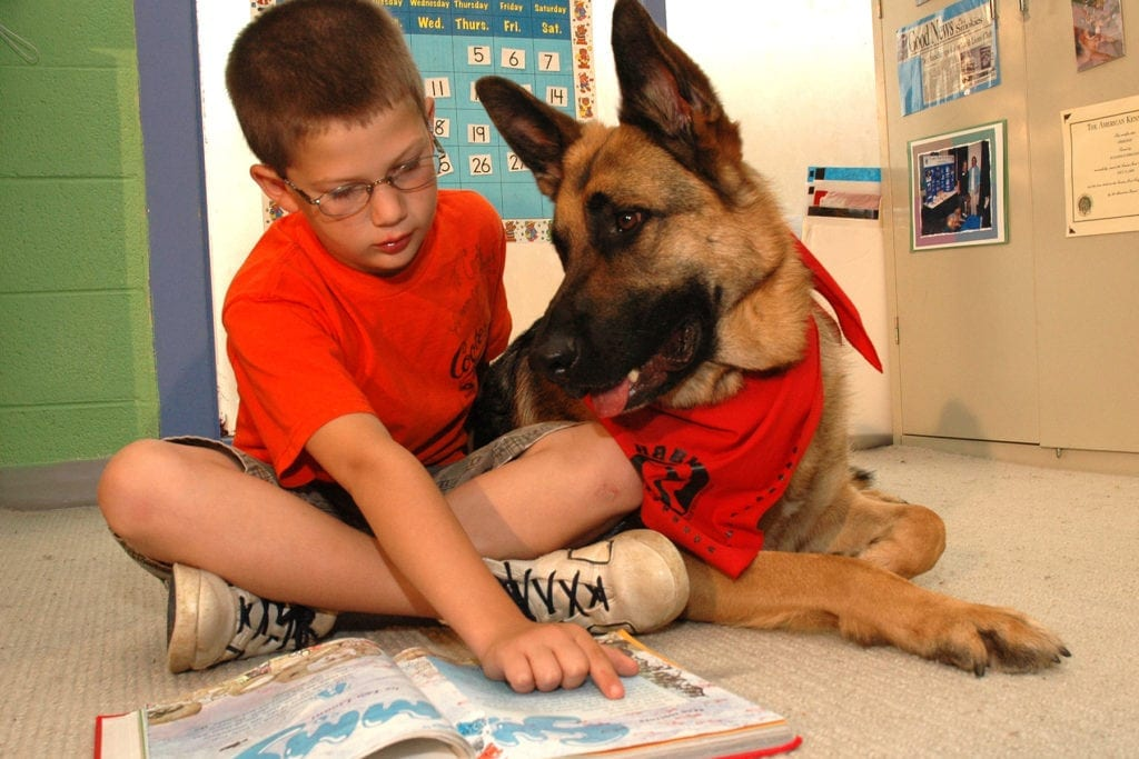 """Anne Beall and Steve Dale talk about """"Heartfelt Connections,"""" like dogs who help kids to read"""