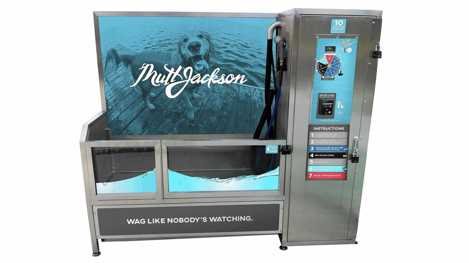 Steve dale talks about mutt jackson dog wash at mondog on wgn radio thousands of dogs at montrose beach or mondog enjoy the free dog beach on any given sunny and pleasant weekend this dog beach is located just north of solutioingenieria Choice Image