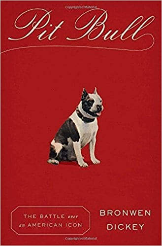 Pet expert Steve Dale talks about pit bull dogs with Brownwen Dickey