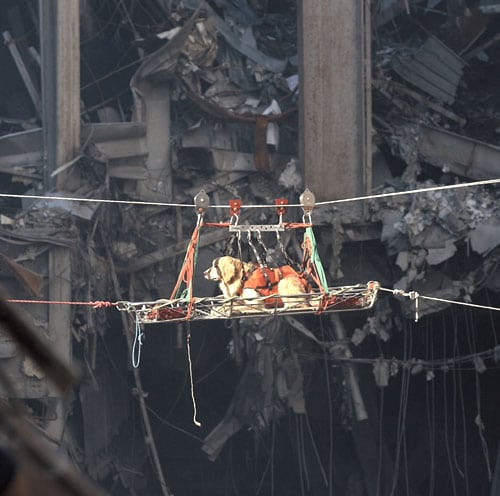Riley - this image will forever be connected to September 11