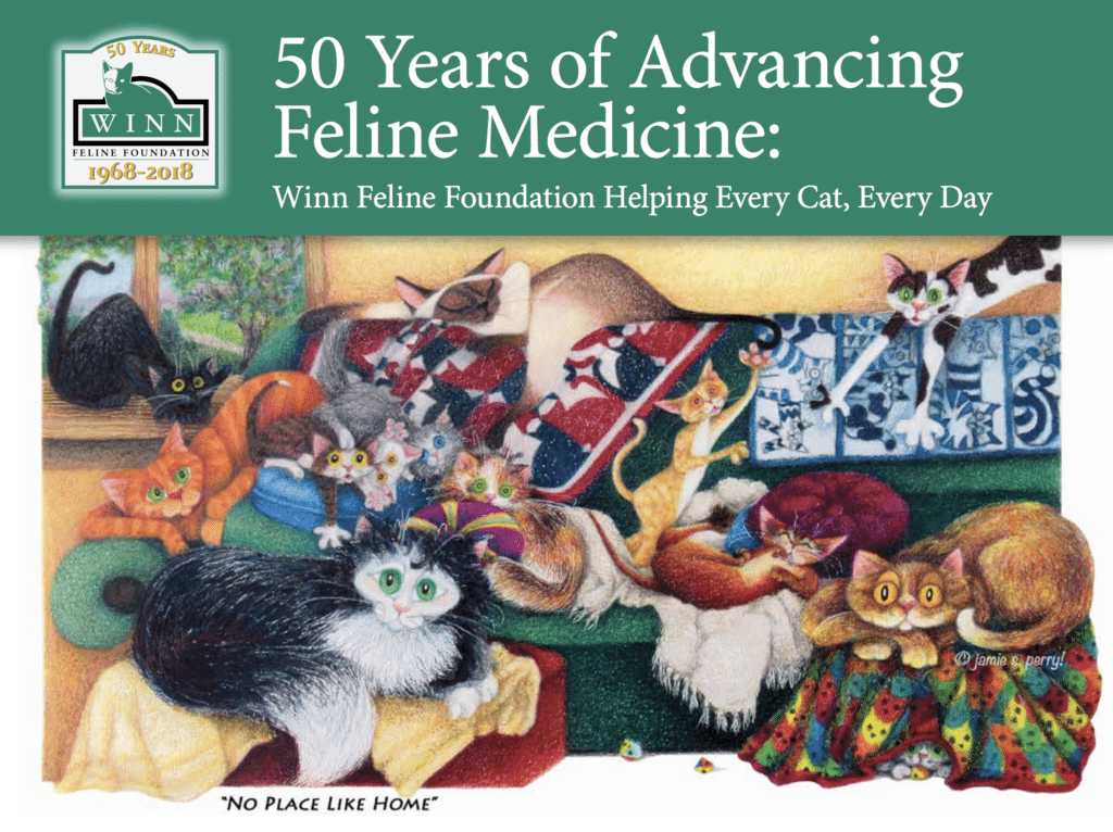 Free online book celebrating 50 years of cat health research and huge results