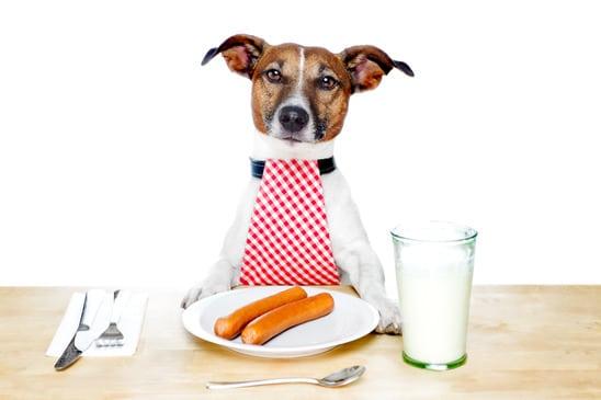 Lots of concerns regarding raw food diets