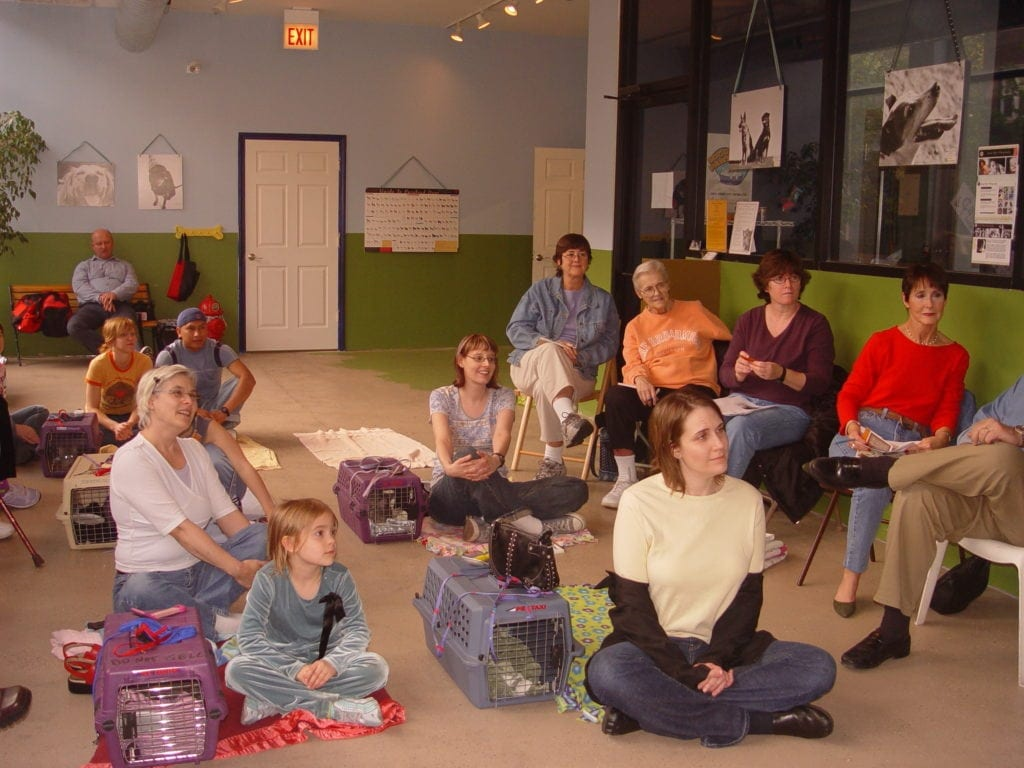 Dr. Kersti Seksel is the mother of all kitten classes