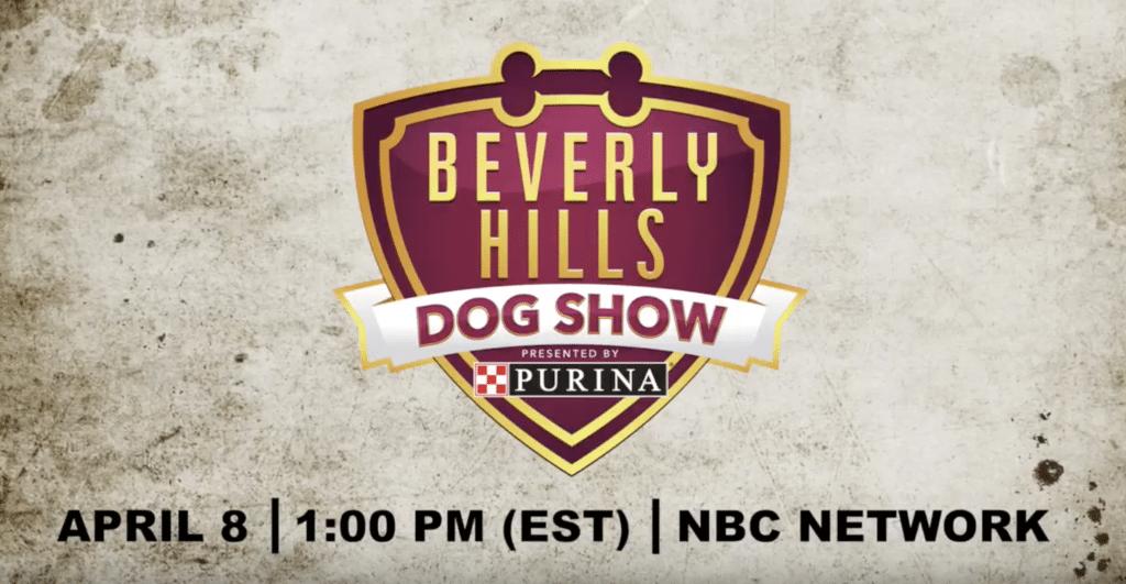 Beverly Hills Dog Show Nbc
