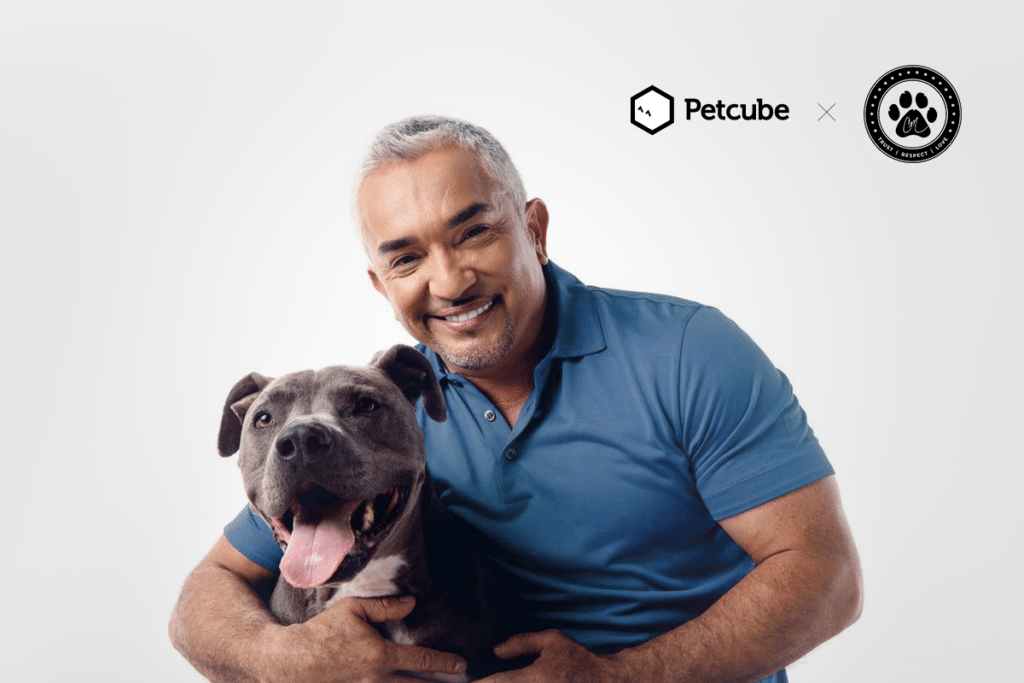 Is it smart for Pet Cube to partner with Cesar Millan?