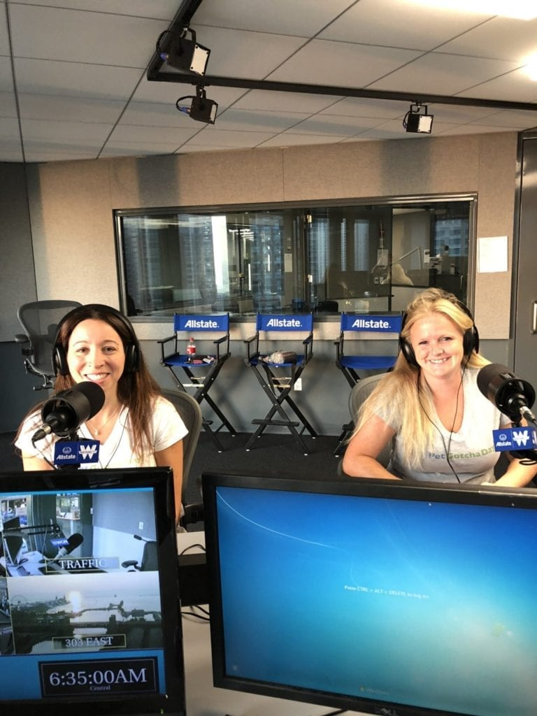 Pet Gotcha Day on WGN Radio with pet expert Steve Dale