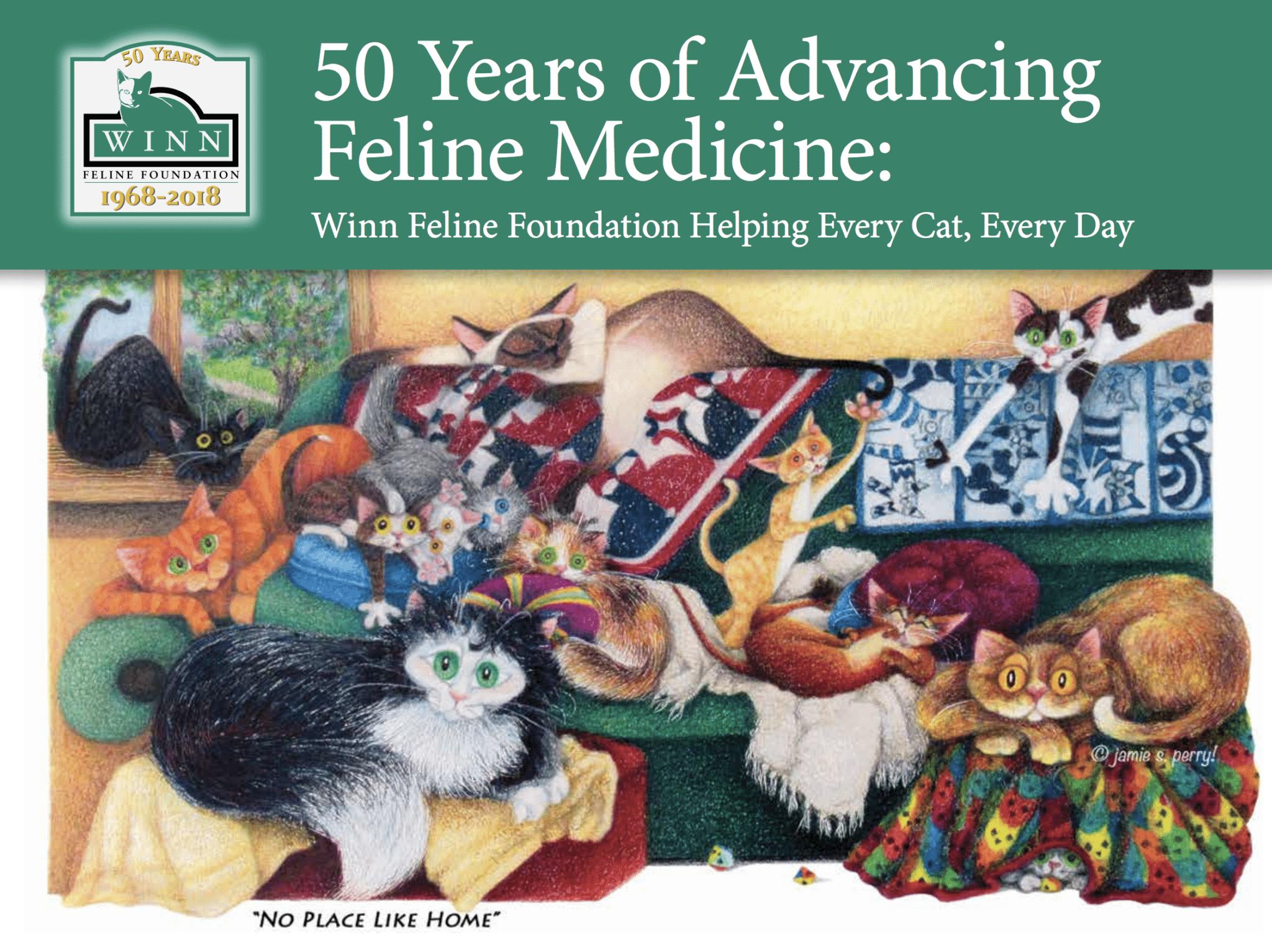 Winn Feline Foundation celebrates 50 years in fashion