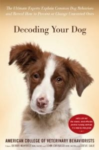 Dr. Debra Horwitz and Steve Dale on thunderstorm anxiety in dogs