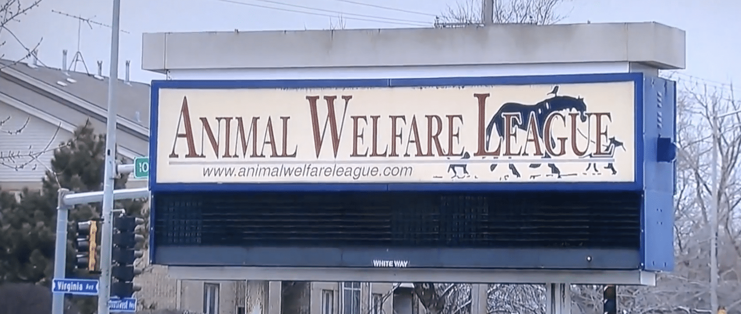Pet expert Steve Dale's most recent report on the Animal Welfare League of Chicago