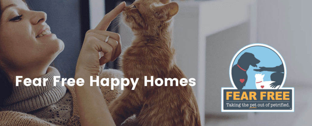 Dr. marty Becker and Steve Dale talk Fear Free Happy Homes
