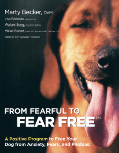 Pet expert Steve Dale and Dr. Marty Becker on Fear Free Happy Homes