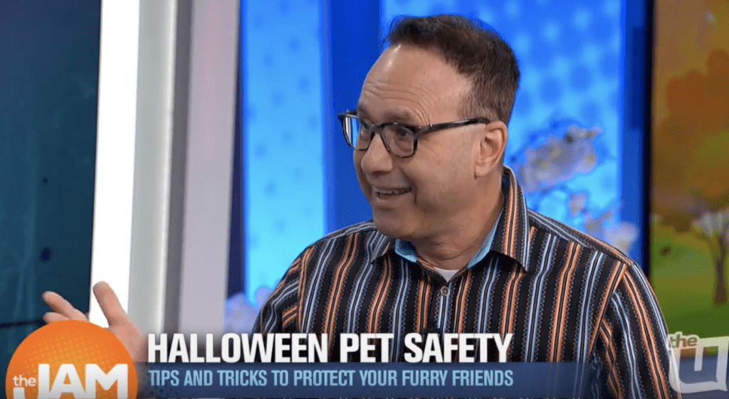 Halloween and pets with Steve Dale on The Jam on WCIU TV