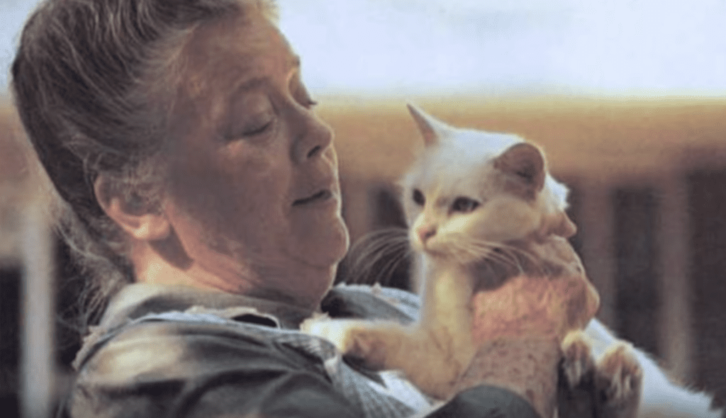 Pet expert Steve Dale says Aunt Bee became a crazy cat lady