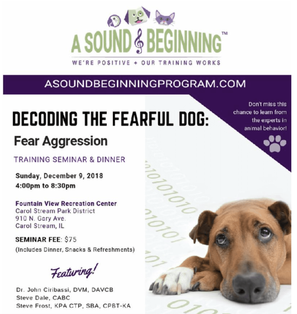 A Sound Beginning Program Decoding the Fearful; Dog