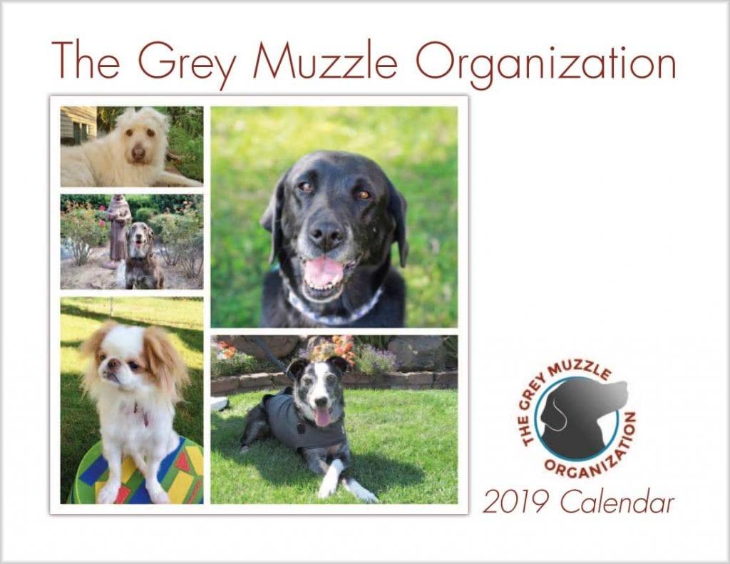 senior-dog-rescue-calendar-cover