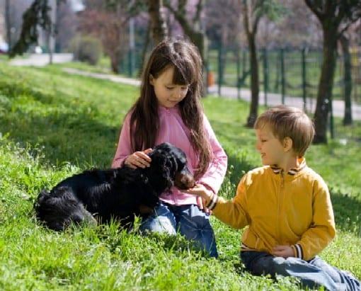 children, dogs, Lyme-disease, pet-expert-Steve-Dale