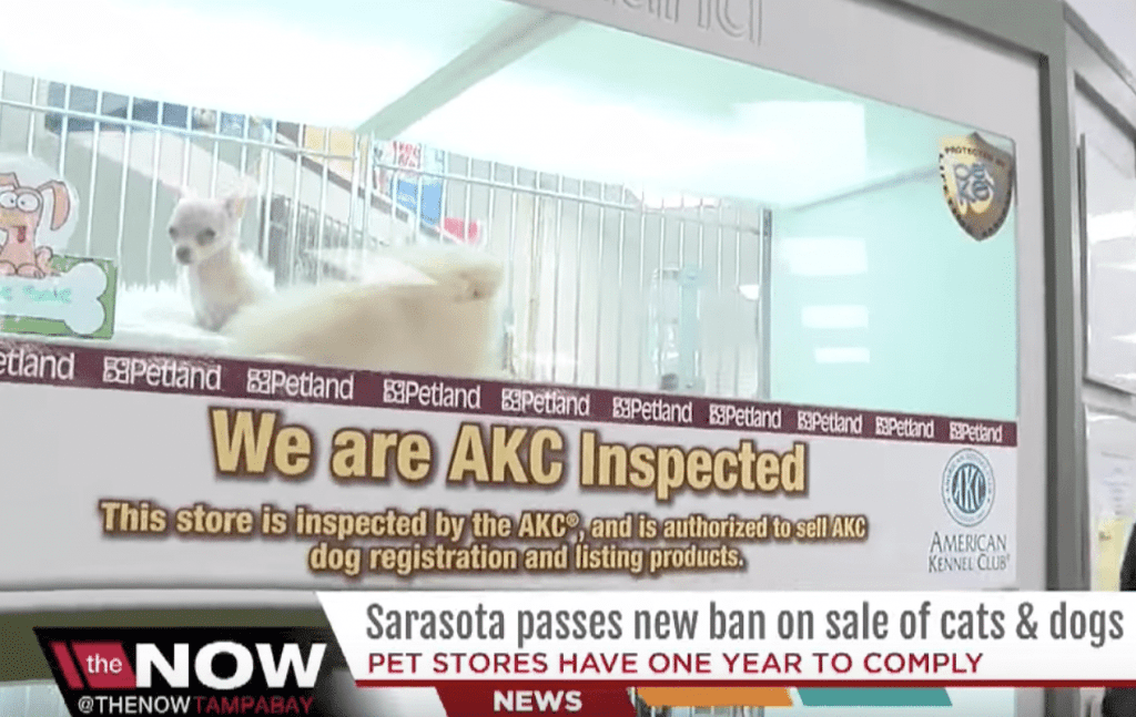 AKC inspected