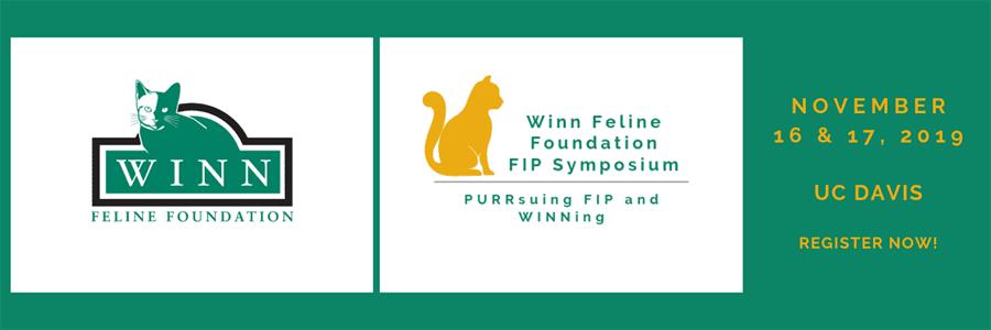 FIP and Winning