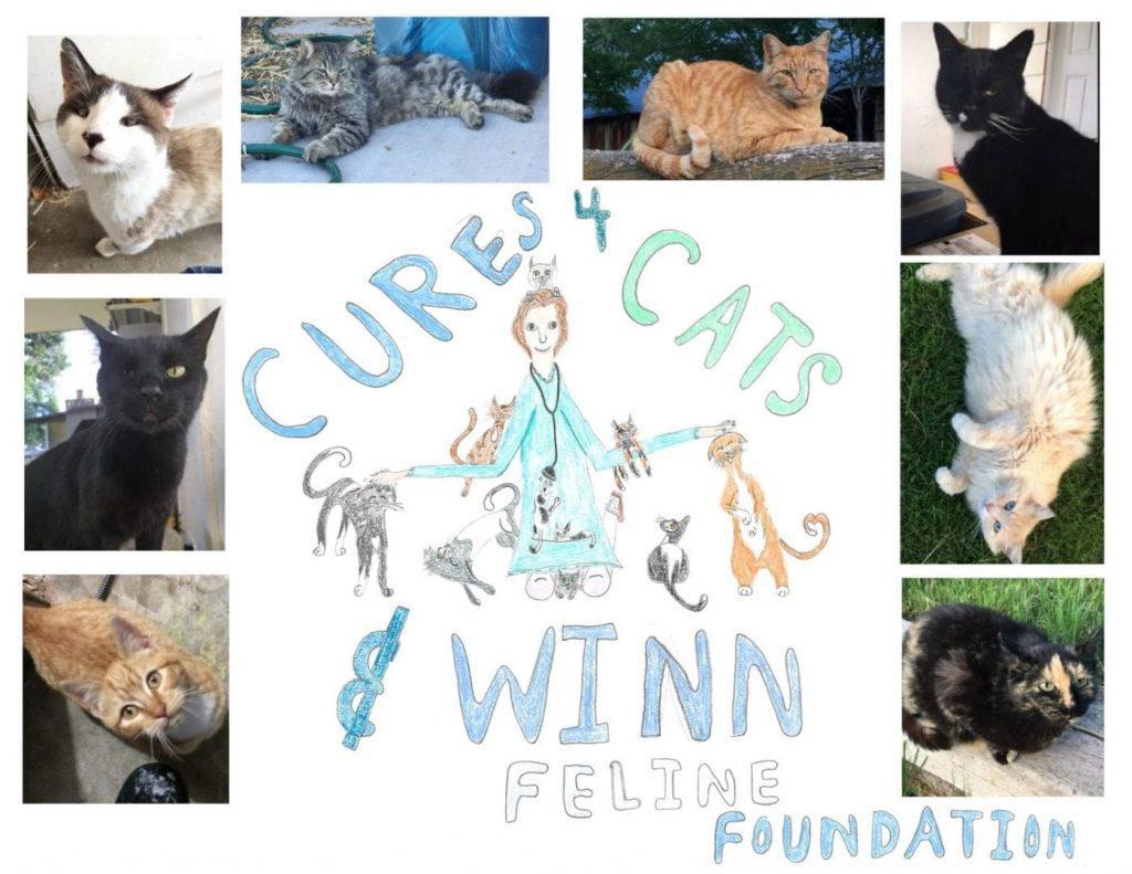 Cures4Cats-Winn-Feline-Foundation-Final-2