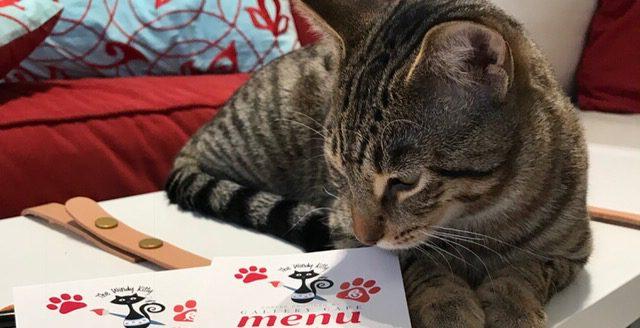 menu windy kitty-export-1