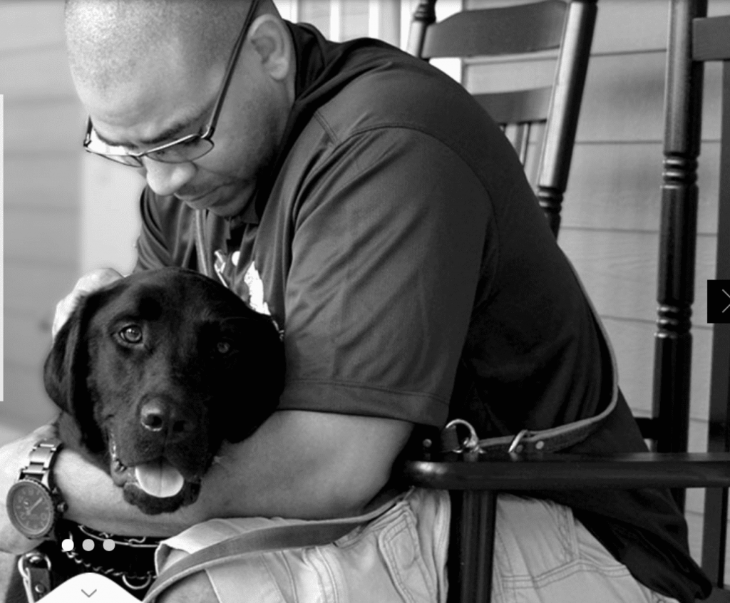 service dogs and ptsd